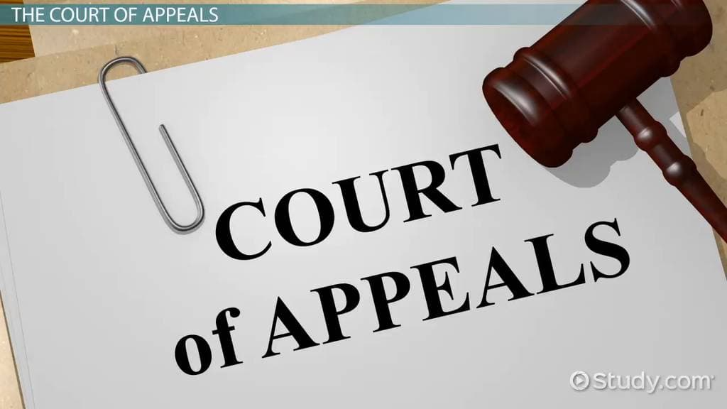Request for Revision Court of Appeals