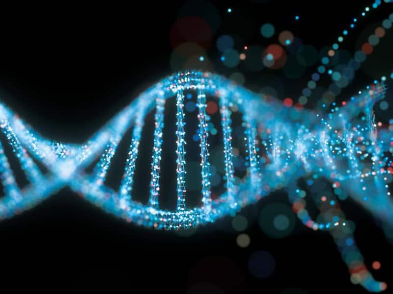 GENETIC STUDIES INFRINGEMENTS