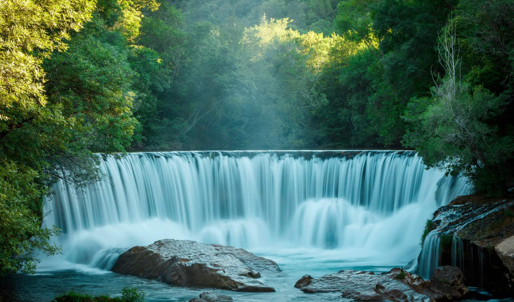 WATER AND AQUATIC