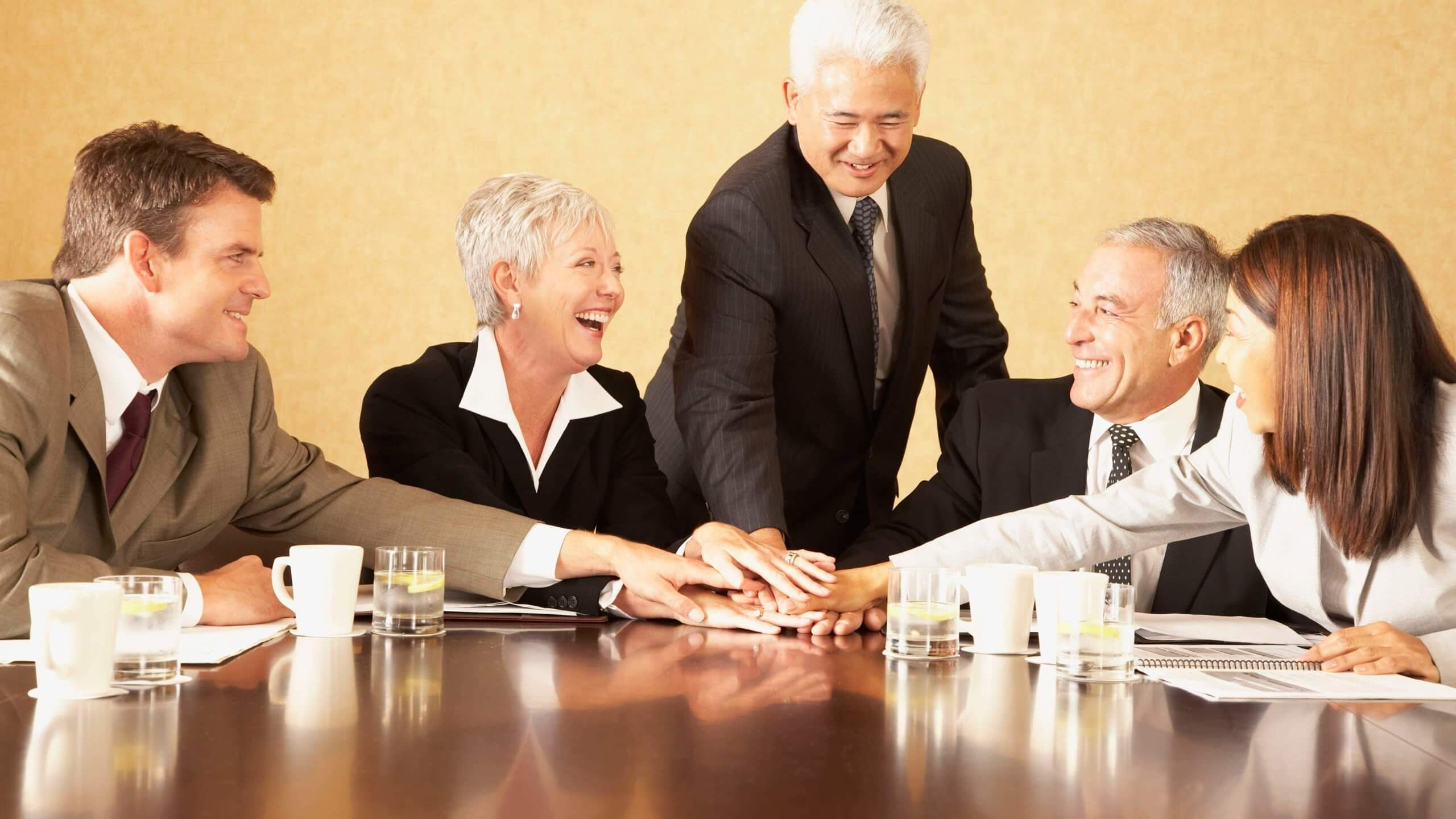 LIMITED COMPANY WITH A BOARD OF DIRECTORS