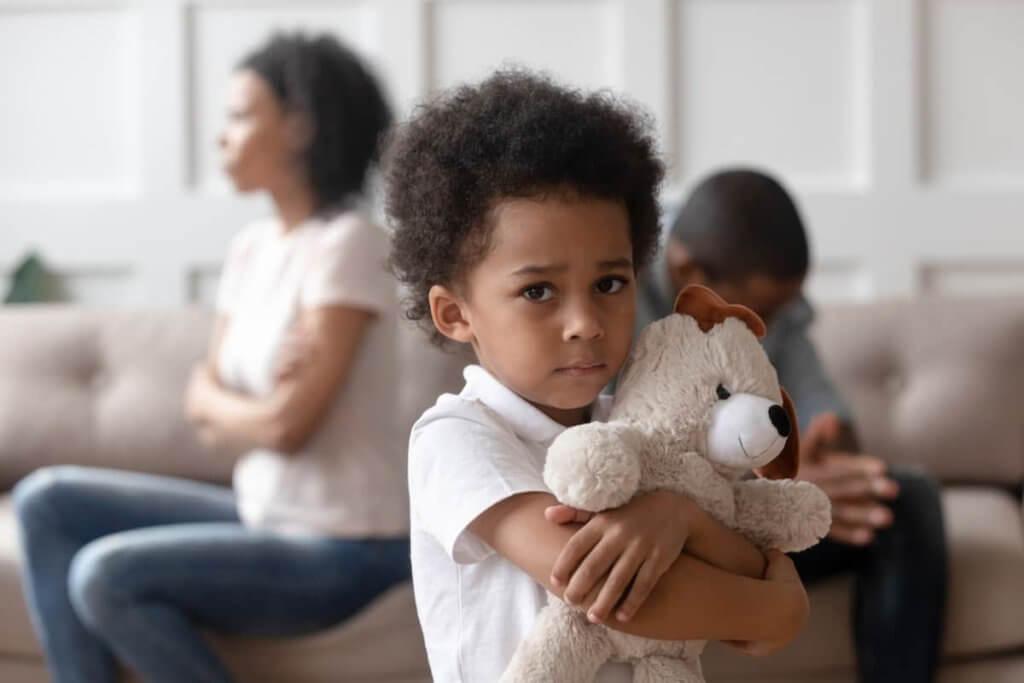 What is Child Custody