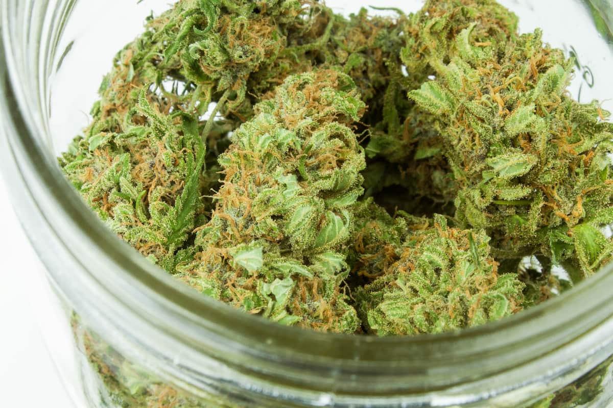Hemp From Marijuana